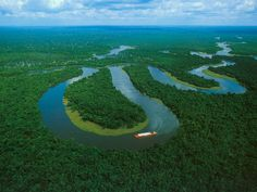 Fleuve Amazone. Amazonie.