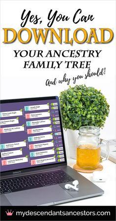 Family Tree Genealogic Tips 44 Trendy Ideas Family Tree Book, Family Tree Chart, Family History Book, Family Guy, Family Trees, Family Tree Projects, Family Tree Layout, Genealogy Websites, Genealogy Forms