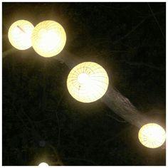 a light bearing tree