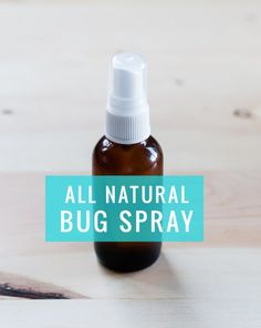 DIY: All Natural Bug Spray