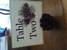 Table numbers tucked into pinecones