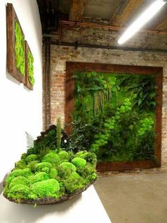 Vertical Garden Ideas jihanshanum is part of Vertical garden wall Vertical garden ideas is a great option for you with less space! But Creating a vertical garden ideas can be as simple or complex a - Moss Wall Art, Moss Art, Vertical Garden Wall, Vertical Gardens, Vertical Planter, Interior Garden, Walled Garden, Plant Wall, Garden Inspiration