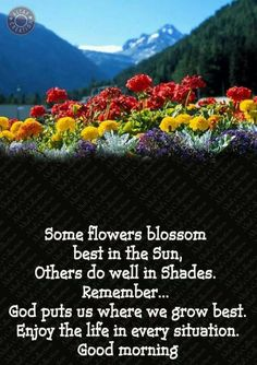 God puts us where we grow best Good Morning Wishes Quotes, Good Morning Prayer, Good Morning Inspirational Quotes, Morning Greetings Quotes, Inspirational Prayers, Good Morning Good Night, Morning Qoutes, Morning Thoughts, Night Quotes