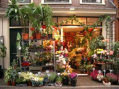 Shopping in Amsterdam.