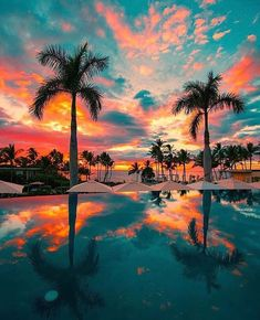 The view of sunset from your pool chair at this resort will leave you completely captivated! Escape to Maui, Hawaii with us / Link in bio . Hawaii Vacation, Beach Trip, Dream Vacations, Maui Hawaii, Landscape Photos, Landscape Photography, Summer Nature Photography, Beautiful World, Beautiful Places