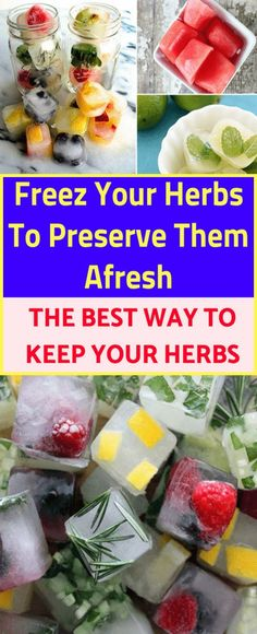 Freeze Your Herbs To