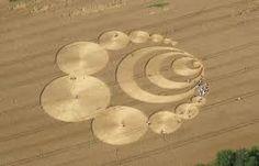 Risultati immagini per cerchi nel grano a pontecurone