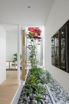 Gallery Of Green Edge House / Ma Style Architects   3. Indoor GardenIndoor  ...