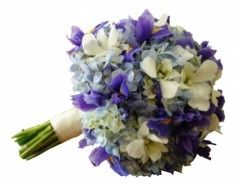 iris wedding bouquets   Bridal bouquet hydrangeas ,blue iris in Germantown, MD - GENE'S ...