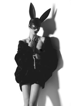 lapin sombre.  Photographer : George Mario