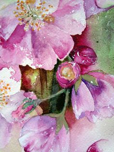 Watercolour Florals: \'Spring\' : Cherry Blossom