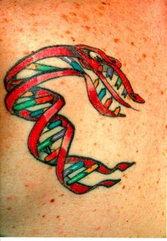 Carl Zimmer's Science Tattoo Emporium: The DNA Monster  (I'm sure I met it)