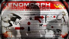 Alien isolation Xenomorph lineage by Francisco Iglesias Periáñez, via Behance