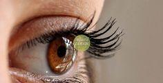 3 Ayda Görmenizi Netleştirecek Ve Göz Numaranızı Düşürecek - Organik Zamanı