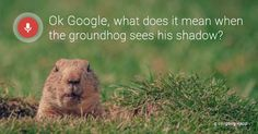 Google+just love it.