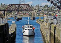 Just a Short Walk Away: The Locks in Ballard/Magnolia is worth visiting. We like to have picnics there and watch the boats go by. Be sure to see the salmon ladder while you're there. You're likely to see a great blue heron there as well. Their nest is on the Magnolia side of the locks.