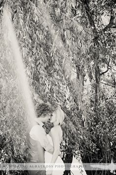 Kissing by the willows, Helena, Montana