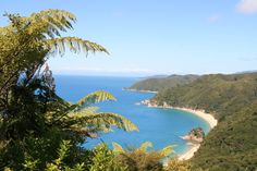Beautiful view from the top of a mountain over a bay in the Abel Tasman National Park in New Zealand.