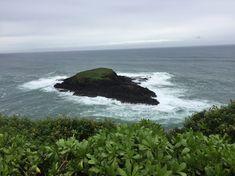 Im Winter kann man mit etwas Glück, am Nördlichsten Punkt von Kauai, Buckelwale und Mönchsrobben beobachten.