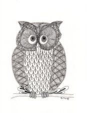 The Owl's Who Drawing by Paula Dickerhoff