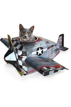 If I had a cat....