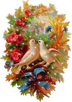 GIFS HERMOSOS: cosa bonitas encontradas en la web Beautiful Love Pictures, Beautiful Gif, Love Images, Beautiful Roses, Bing Images, Dove Pictures, Jesus Pictures, Gif Pictures, Gif Bonito