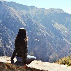 Mas tarde en el blog! #cañondelcolca #condor #arequipa #peru #travel