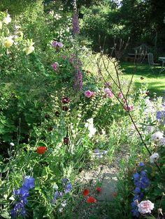 Early summer garden Summer Garden, Garden Design, Explore, Plants, Landscape Designs, Plant, Planets, Yard Design, Exploring