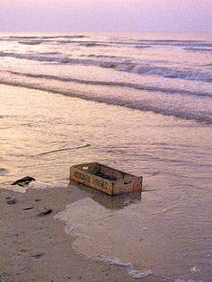 'Where's the fish?' von Dirk h. Wendt bei artflakes.com als Poster oder Kunstdruck $18.03