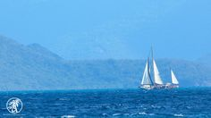 Sailboat off the shore of St. Thomas in the #USVI. Just the wind and the waves...take me there. #Caribbean