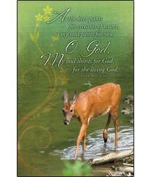 General Worship Bulletin - My soul thirsts for God, for the living God