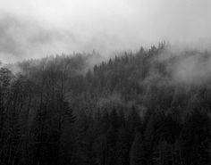 Black and White Nature Landscape Photography Print, Gothic style, Mountains, Forest, Fog, Dark