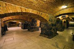 Salão dos Arcos do Teatro Municipal São 32 metros de túneis que acessam o belíssimo Salão dos Arcos, que estava soterrado e foi redescoberto na reforma de 1986. Há ainda um terceiro túnel, que ligava o Hotel Esplanada, hoje sede da Votoratim, que é um verdadeiro mistério arqueológico, pois ele nunca foi descoberto!
