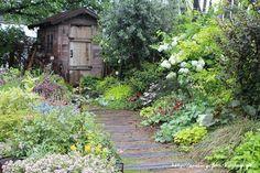 フローラのガーデニング・園芸作業日記-ガーデン 花壇