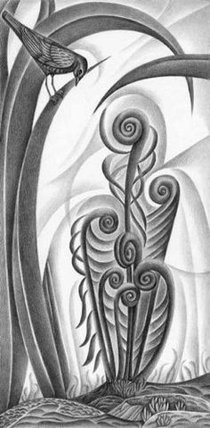 Michael Cook. Fern. Pencil drawing.