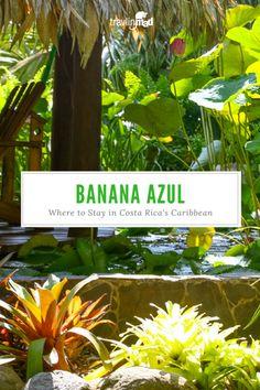 Hotel Banana Azul: Where to Stay in Costa Rica's Caribbean Paradise