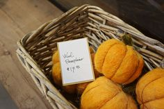 Wool Pumpkins, and other fun decor!