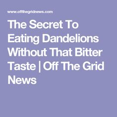 The Secret To Eating Dandelions Without That Bitter Taste  | Off The Grid News