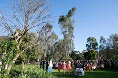 Emu, Wedding Gallery, Homestead, Dolores Park, Travel, Viajes, Trips, Tourism, Traveling