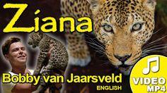 BUY the song now - Ziana! Written by Machiel Roets, dedicated to Ziana, a female leopard on Shayamanzi, and sung by Bobby van Jaarsveld Bobby, Singing, Van, Songs, Female, Music, Musica, Musik, Muziek