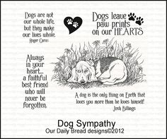 Dog Sympathy set by Our Daily Bread.