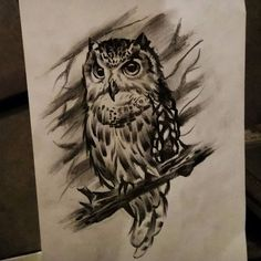 Download Free Owl obsession. #owldesign#owl#tattoo#drawing#sketch#mystic#night#time# ... to use and take to your artist.