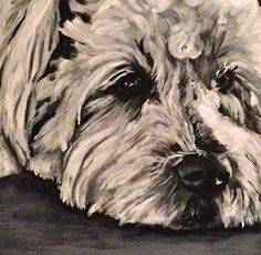 12x12 custom dog portraits available.  Acrylic paint on 1-3/8 inch profile canvas.    Just send me your favorite photograph and Ill whip up a
