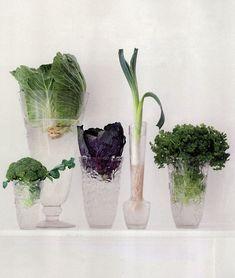 Vegetable bouquets // photo by Cora Büttenbender