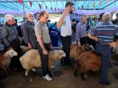 Eid al-Adha ('Îd al-Adhâ), la festa nella quale ogni famiglia musulmana immola un animale, e l'interpretazione delle Scritture. Breve nota di Andrea Lonardo (con in appendice una meditazione di Achille Tronconi) - Diario