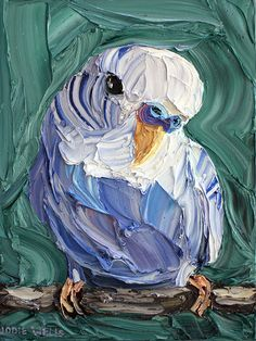 Adoring Budgie, Jodie Wells, Oil on Canvas, 40x30cm, $1250