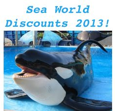 Sea World Discounts for 2013! #travel #seaworld