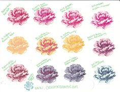 Crush on Stampin: Stampin' UP! Color Combinations