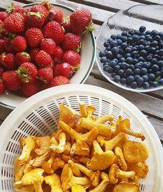 Na endlich gibt der finnische Sommer seine Früchte preis. Wie schön die Farben sind.  #kesä #nomnom #chanterelle #pfifferlinge #mansikka #mustikka #erdbeeren #blaubeeren #metsä #thisisfinland #tasteoffinland #finnishfood
