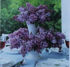 love lilacs in the spring